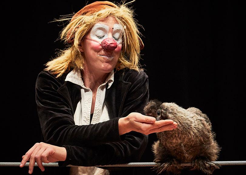 La circassienne Johanna Gallard en habit et maquillage de clown, donnant à manger à une de ses poules.